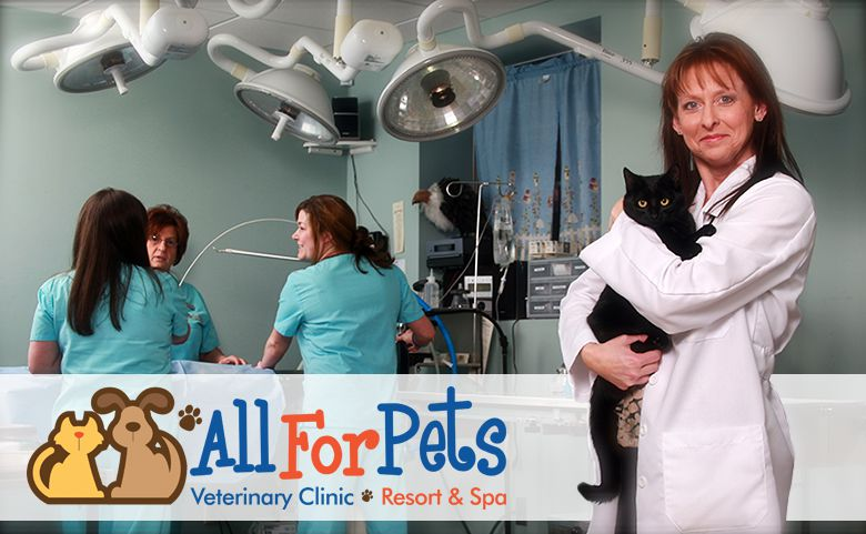 All For Pets in Cabot